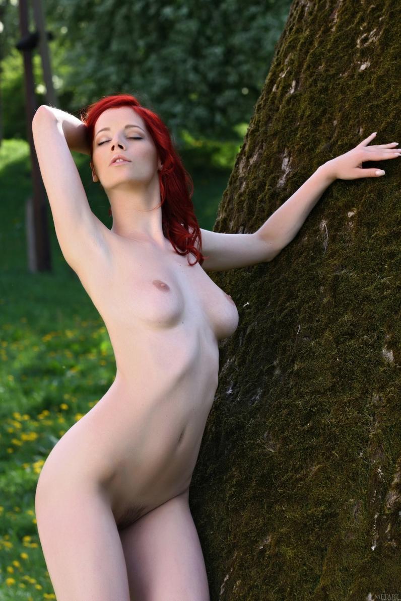 у дерева порно